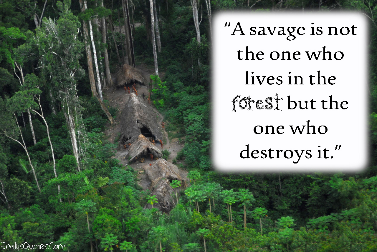 how is nature destroyed by human beings