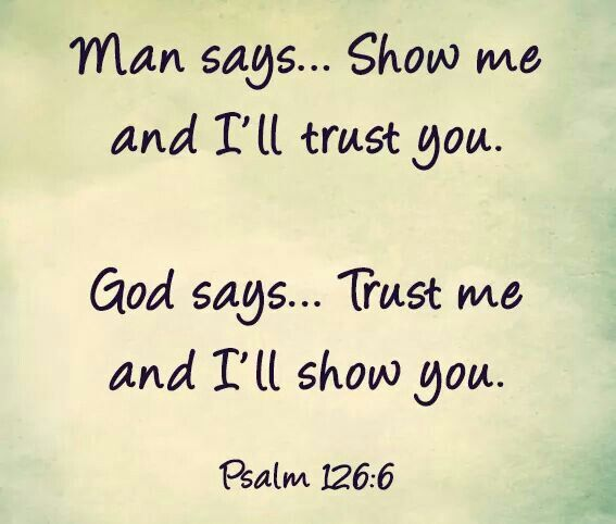 Quotes About Trust Bible 60 Quotes Cool Trust In The Lord Quotes