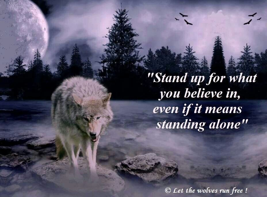 Quotes About Lone Wolf 45 Quotes