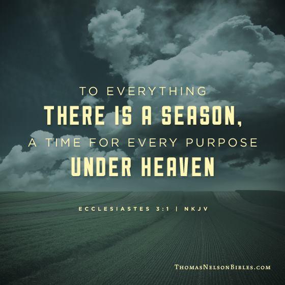 interpretation of the bible verses ecclesiastes 31 8