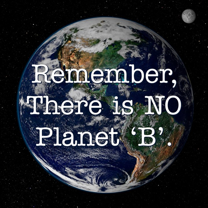 do we need a world environment Why do we need nature essay story we should believe our world is capable of living in for the country's natural environment why don't we utilize all.