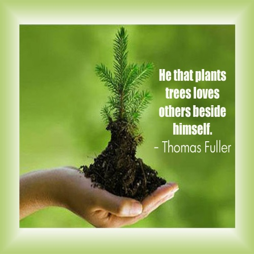 Quotes About World Environment Day 22 Quotes