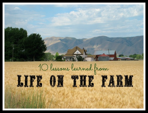 Quotes About Farmer's Life 60 Quotes Stunning Farm Quotes