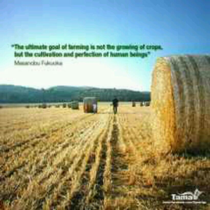 Farmer Quotes | Quotes About Farming 161 Quotes