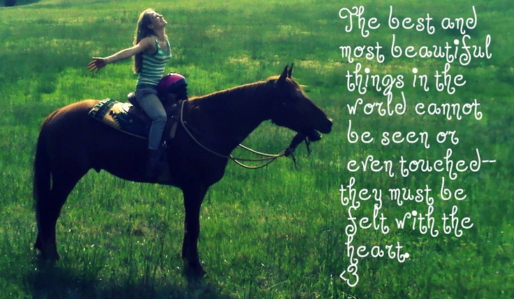 Horse girl quotes sayings
