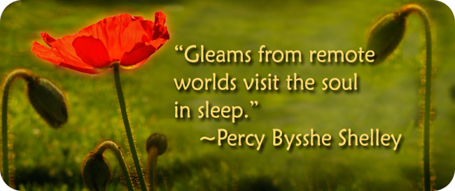 Quotes about poppy 72 quotes mightylinksfo