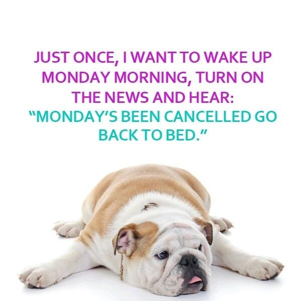 Quotes About Monday Morning Work 24 Quotes