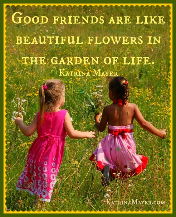 Quotes About Friendship Garden 25 Quotes