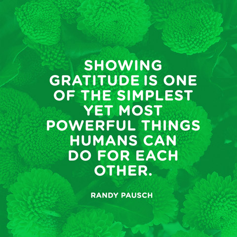 http www gratefuldailyinspirations com 5 great gratitude quotes