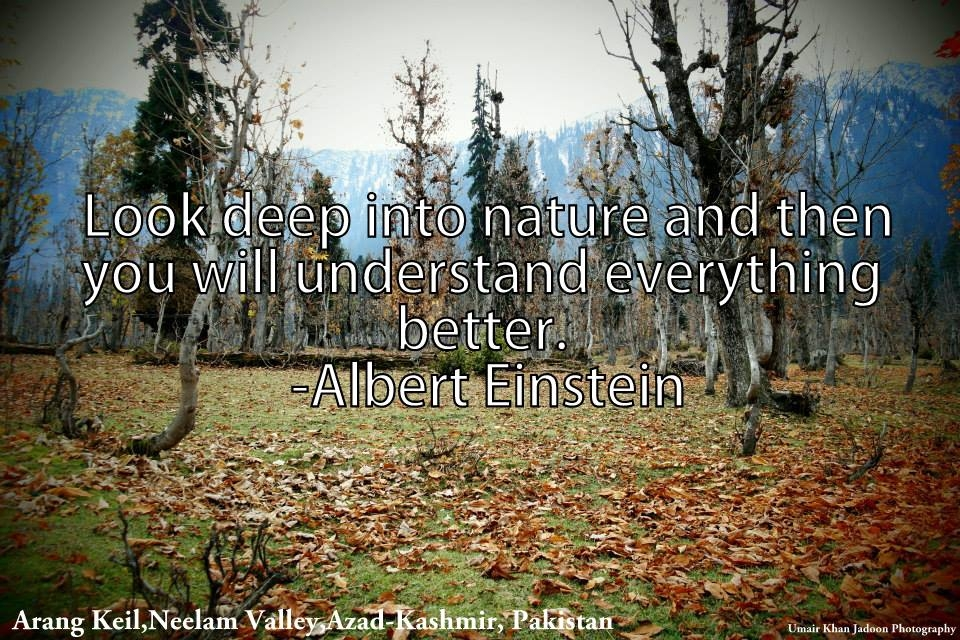 Quotes About Beautiful Kashmir 24 Quotes
