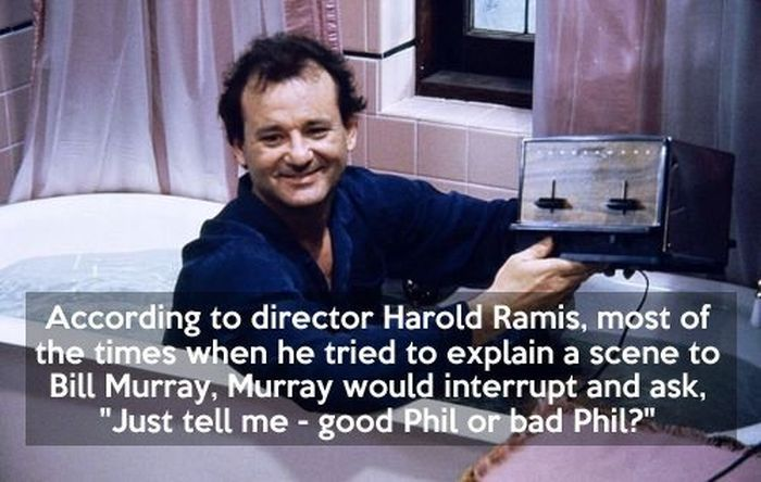 Quotes About Groundhogs 60 Quotes Best Groundhog Day Movie Quotes