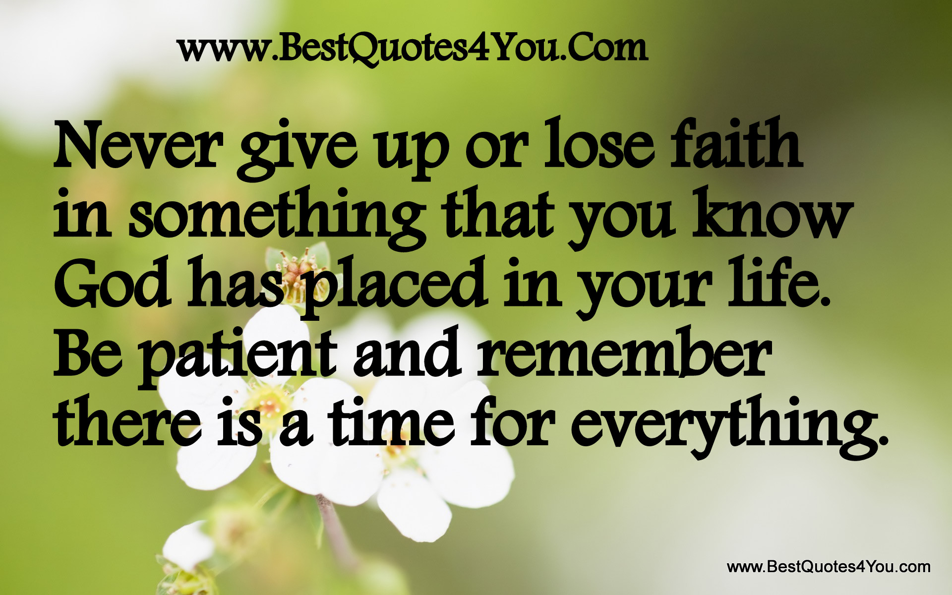Quotes About Patient In Life 75 Quotes
