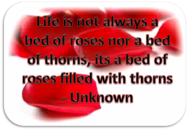 life is not bed of roses