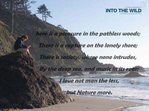 Quotes About Nature Into The Wild 60 Quotes Interesting Into The Wild Quotes