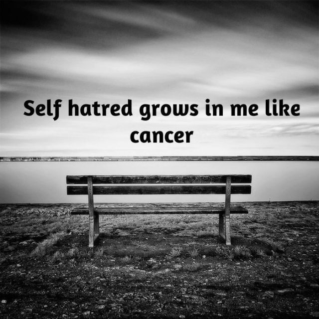 Self Hate Quotes Gorgeous Quotes About Selfloathing 72 Quotes