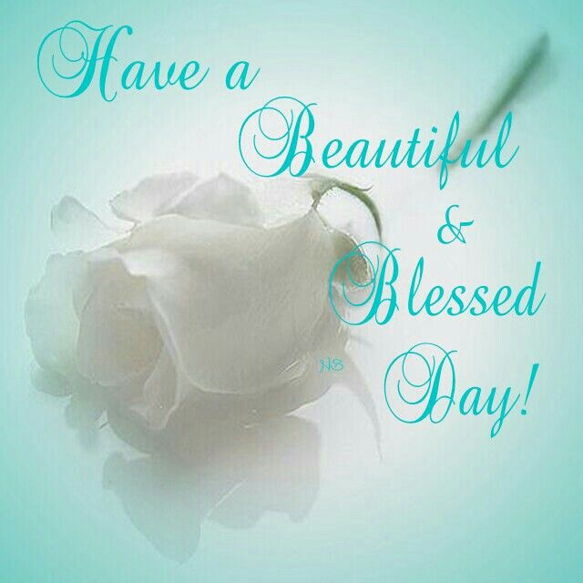 Blessed Day Quotes Simple Quotes About Blessed Day 48 Quotes