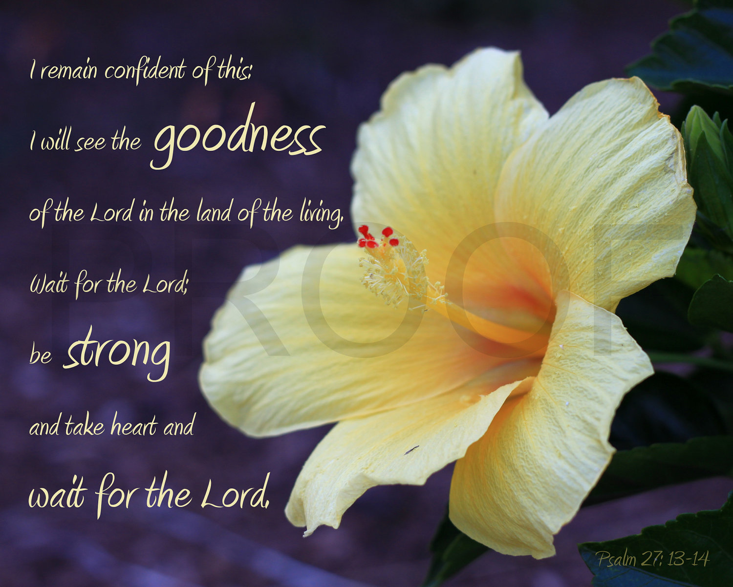 Quotes about funeral flowers 25 quotes img1systatic izmirmasajfo Gallery