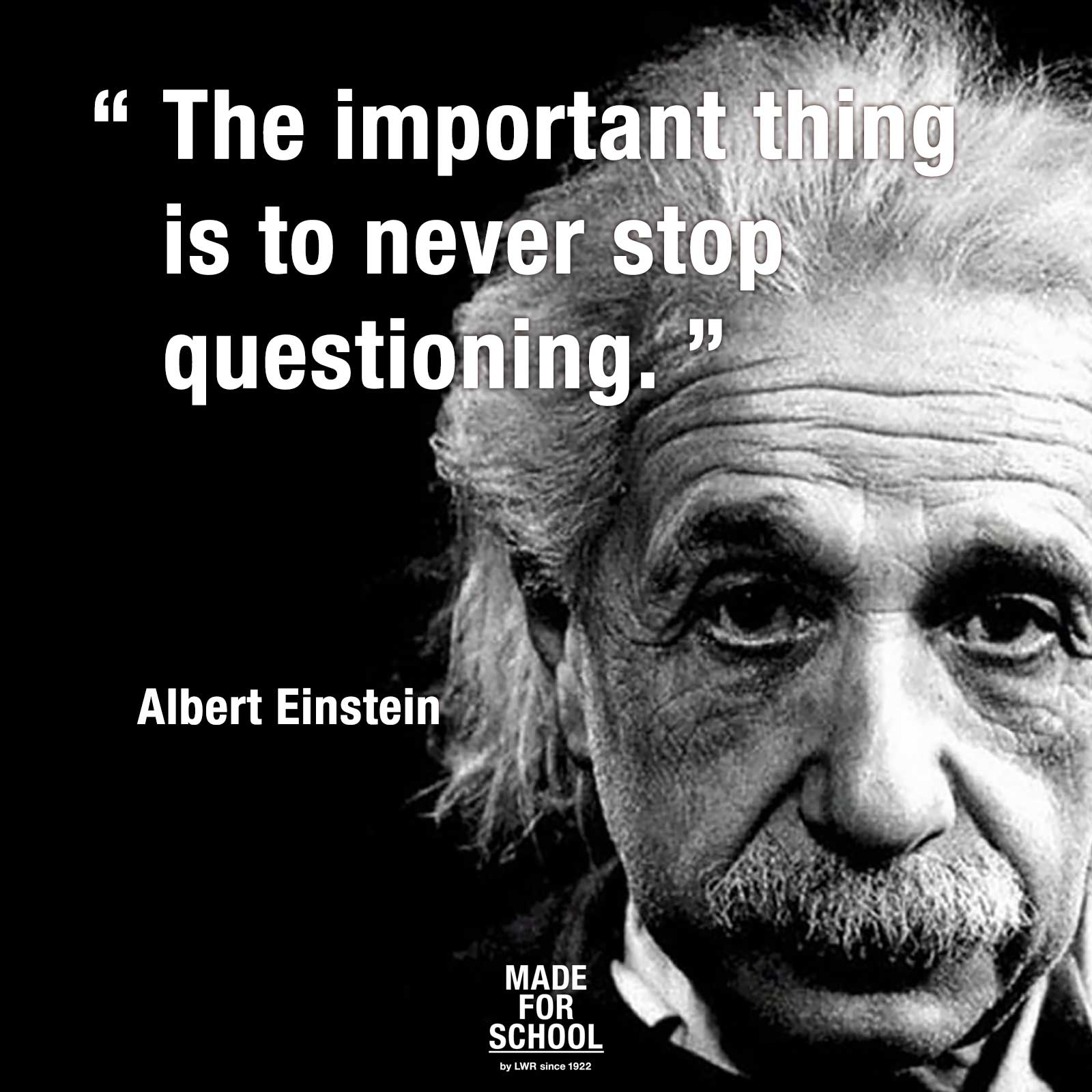 the famous scientific achievements of albert einstein Science was albert einstein's first einstein wrote his famous letter to us president roosevelt in which he albert einstein was one of the founders of the.