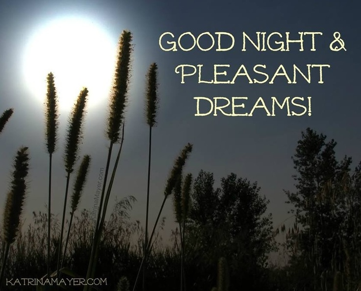 my pleasant dream Whether you want to learn how to lucid dream (ie actively control and be aware of your dreams while sleeping) or you simply want to learn how to have more pleasant dreams, there are a number of things you can do throughout the day and before you go to bed to have the dreams you want.