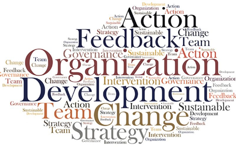 how to develop an organizational training 10 i track and manage my team's competencies related to personal and organizational and then work with them to develop a personal training and development.