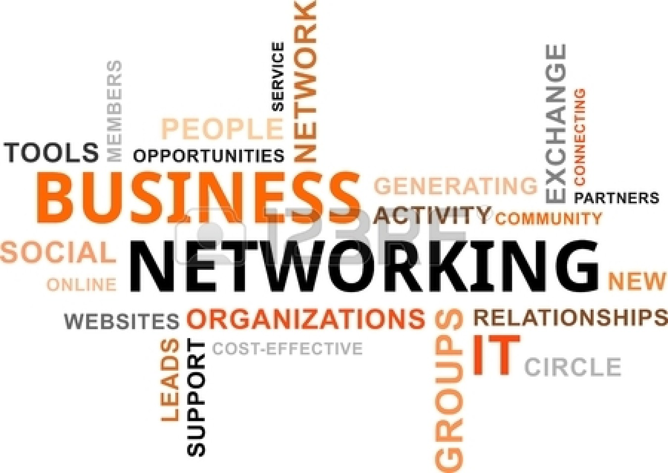 Small Business Networks