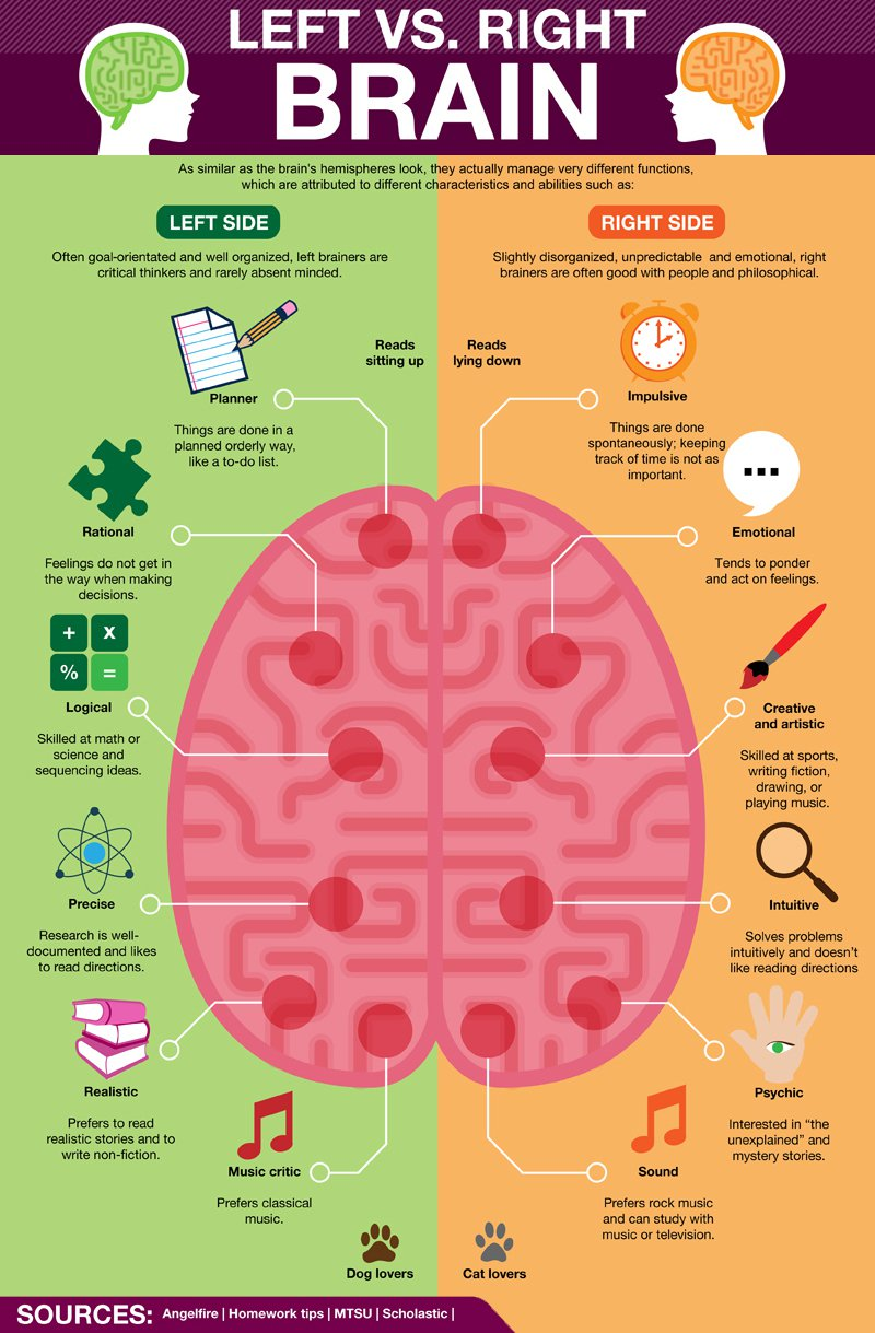 the characteristics of the two sides of the human brain Human mind vs animal brain certain the other side is it has been recognized that the physical characteristics of the human brain do not warrant the extreme.