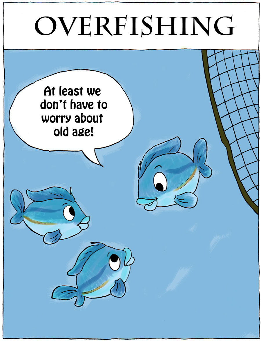overfishing thesis statement