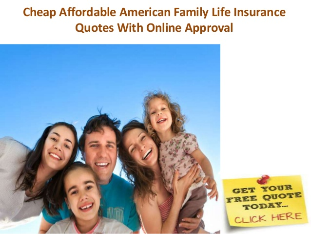 essay about american family life