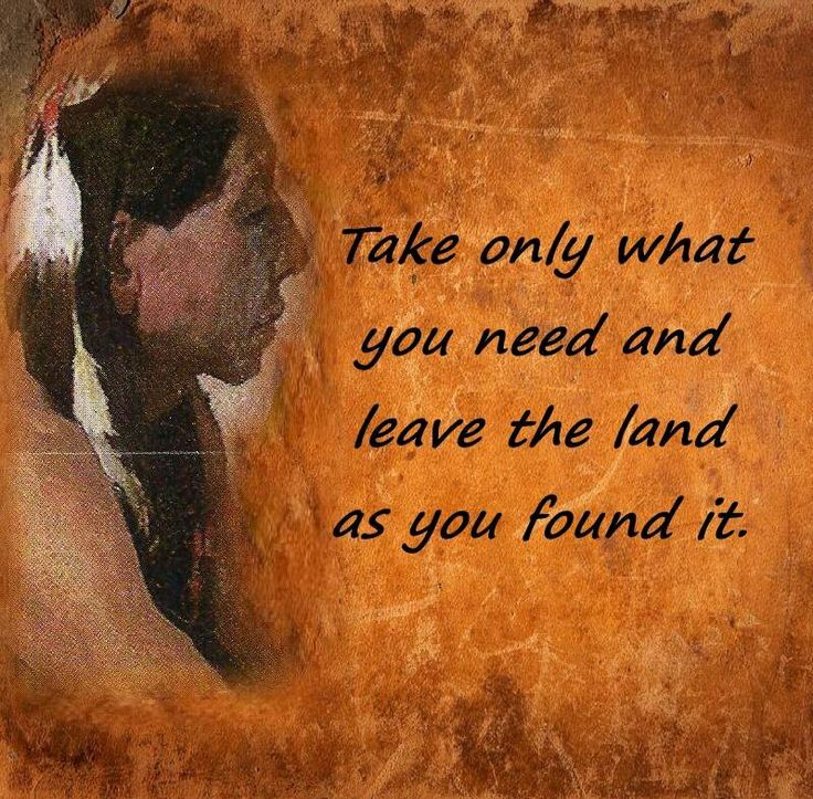 quotes about native land 53 quotes