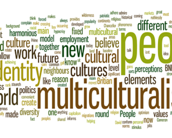 multiculturalism in america hindrance or advantage essay