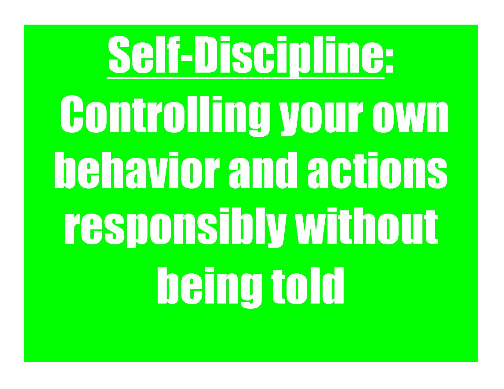 value of discipline Discipline stay the course keep on task work the plan having the mental stamina and clarity to do what needs to be done takes discipline it may include living within the rules, but in the context i am mentioning, it is staying within the framework that you and others agreed upon.