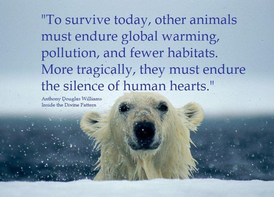 Quotes About Animal Extinction (18 Quotes