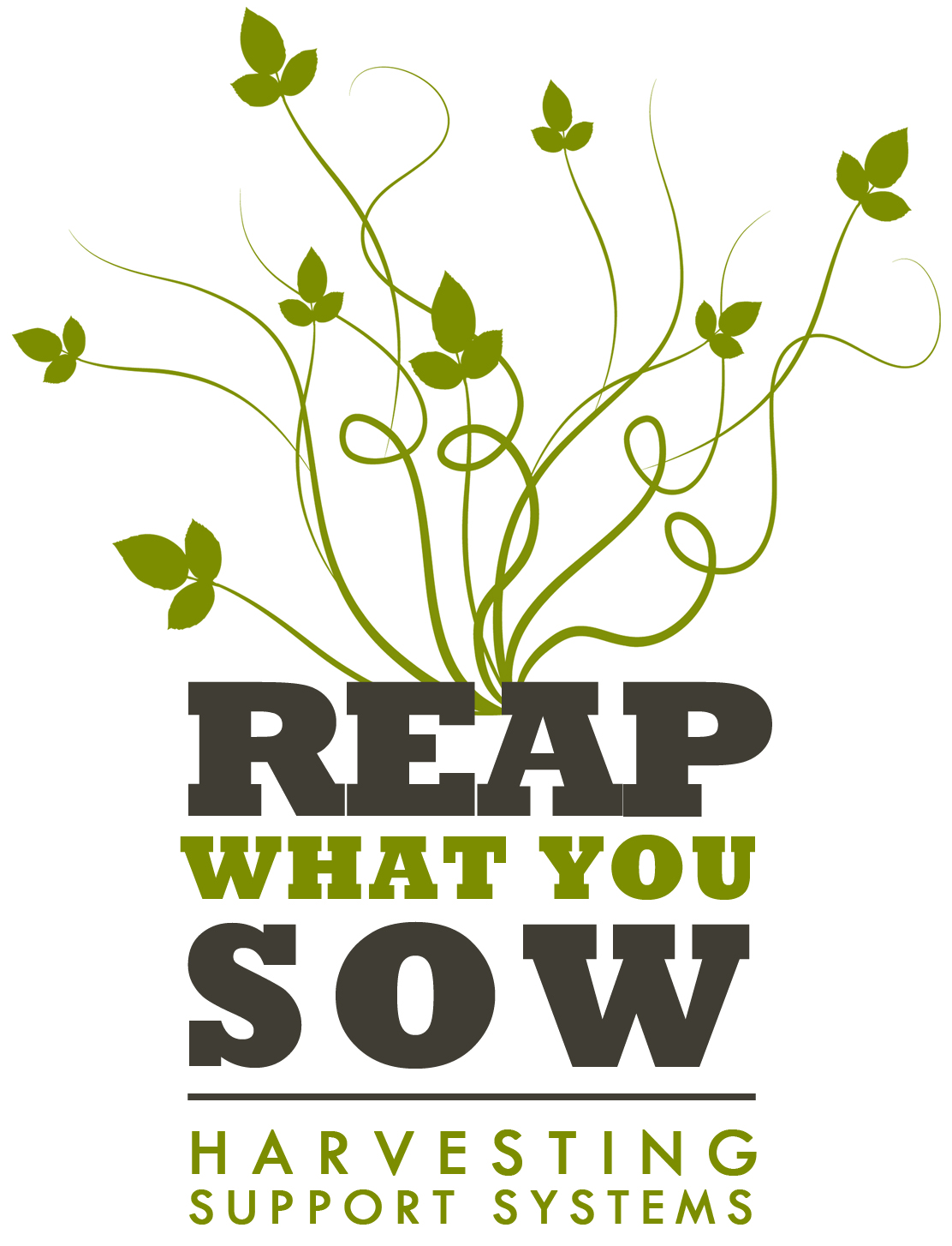 what you sow is what you reap essay
