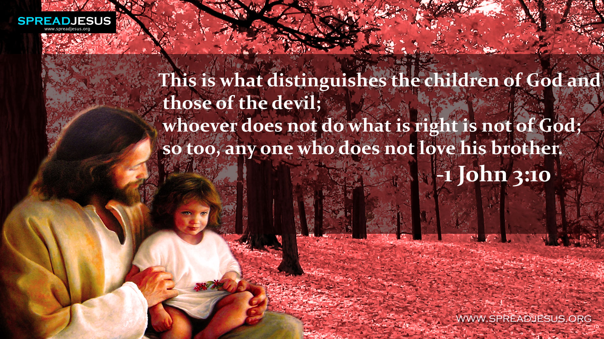 Children photos with quotes