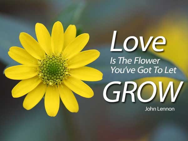 Quotes About Flower Love 60 Quotes Classy Love Flower Quotes