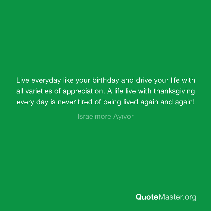 Live Everyday Like Your Birthday And Drive Your Life With All