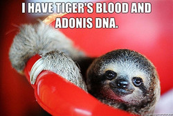 I HAVE TIGER'S BLOOD AND 