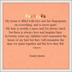 My home is filled with toys and has fingelprints 