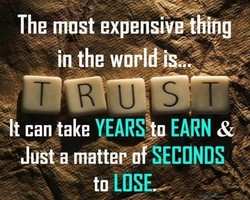 The most expensivvthing 