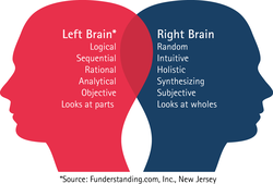 Left Brain* 