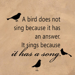 4 A bird does not 