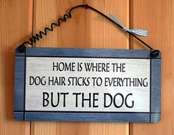 HOME IS WHERE THE 