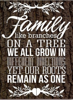 ON TRiE 