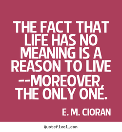 THE FACT THAT 
