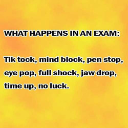 WHAT HAPPENS IN AN EXAM: 