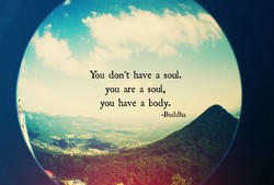 You don't have a soul. 