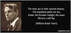 The trees are in their autumn beauty, 