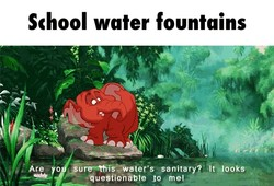 School water fountains 