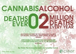CANNABISALCOHOL 