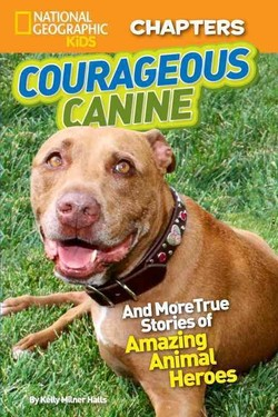 m NATIONAL 